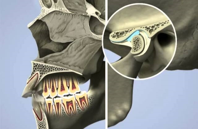 Gneuromuscular Dentistry